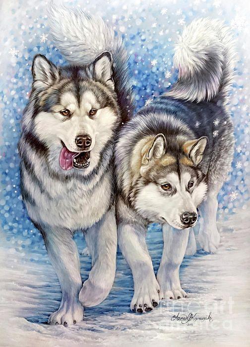 alaskan malamute alaskanmalamuutti dog portrait winter snow pastels drawing painting colored pencil wolf husky