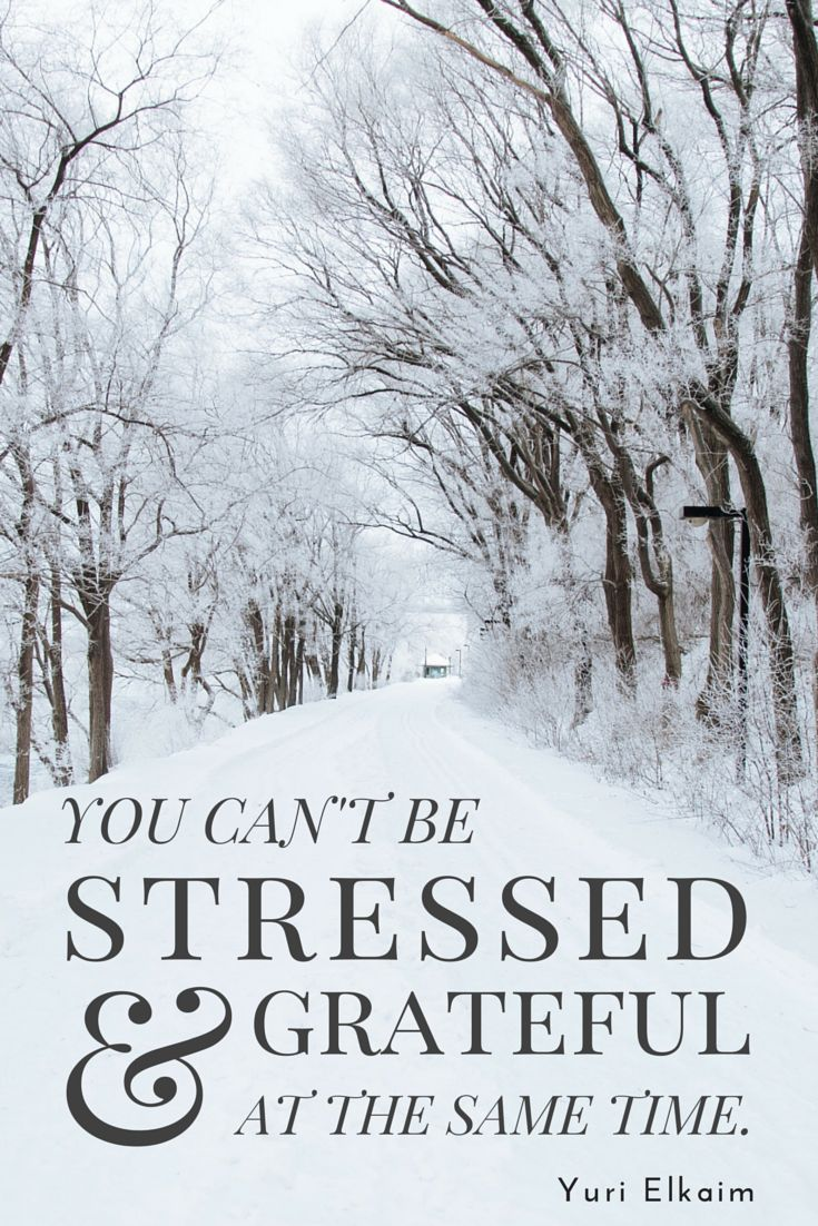 """""""You can't be stressed and grateful at the same time."""" - Yuri Elkaim"""