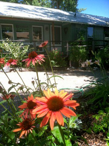 Ada s Place Motel Cottages thebestplacetostay Pinterest Hello summer  Hello  Summer Ada s Place Motel. Adas Place Motel Cottages   xtreme wheelz com
