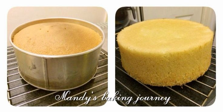 Mandy's baking journey: Genoise sponge recipe