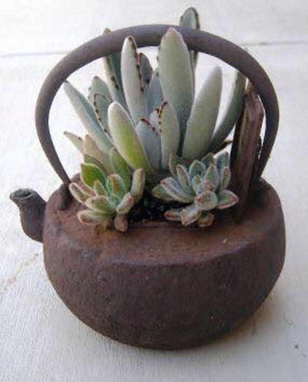 Flori superbe plantate in cele mai nonconformiste ghivece Daca v-ati plictisit de ghivecele banale, va sfatuim sa plantati cateva flori superbe folosindu-va de cateva recipiente grozave! V-am facut curiosi? http://ideipentrucasa.ro/flori-superbe-plantate-cele-mai-nonconformiste-ghivece/