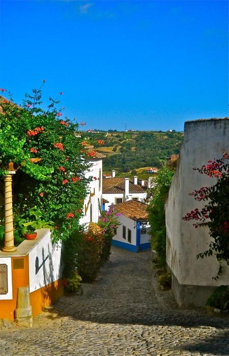Obidos, Lisbon Region, Portugal     Margarida Serrano  Estremadura  http://portugalmelhordestino.pt/fotos_resize/1d6f7916b759284051434ae35136a721.jpg