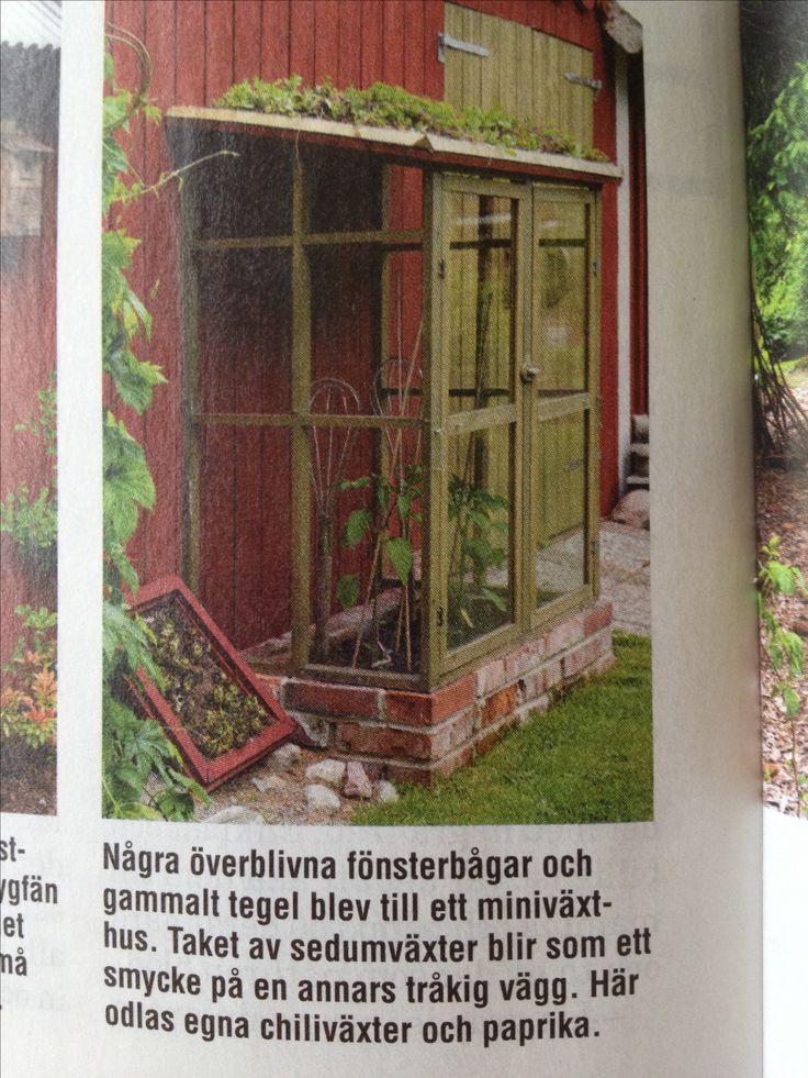 Bra idé på hur man kan bygga ett litet växthus