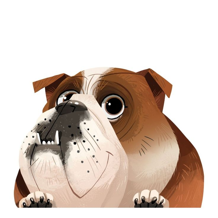 330 best bulldog comics and cartoons and clipart images on
