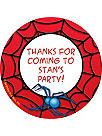 Spiderman Birthday Party Supplies, Decorations & Ideas at Birthday in a Box