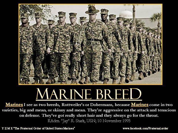 usmc marine corps moto marine corps motivational posters