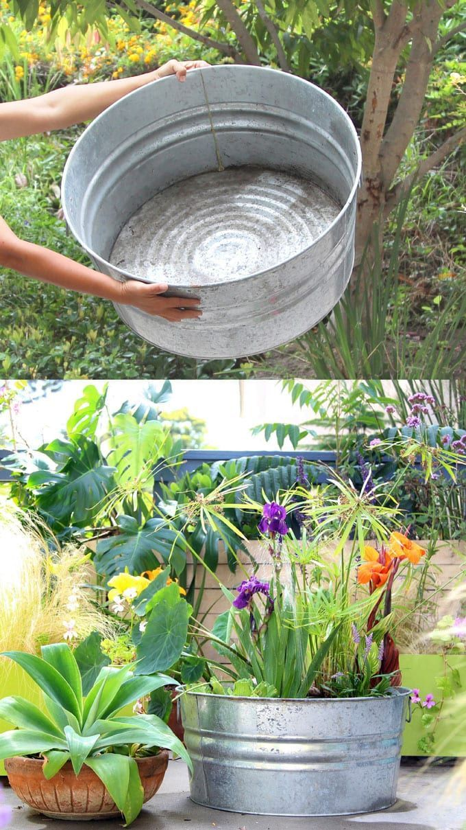 Easy Diy Solar Fountain In 1 Hour With Pond Water Plants Diy Garden Fountains Solar Fountain Diy Fountain