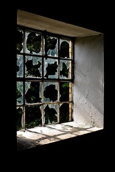 smashed window with tree google search - Home Theater Stage Design