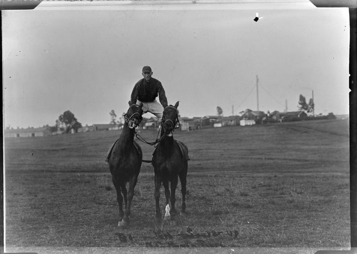 """If you feel like you're struggling to stay on top of multiple projects this morning, this photograph is for you!  Man riding two horses at same time, also known as """"roman riding"""", 1920 :: Milwaukee Polonia Digital Collection"""