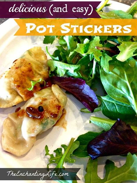 Easy vegetarian Pot Stickers Recipe. So good (and easy to add meat to).