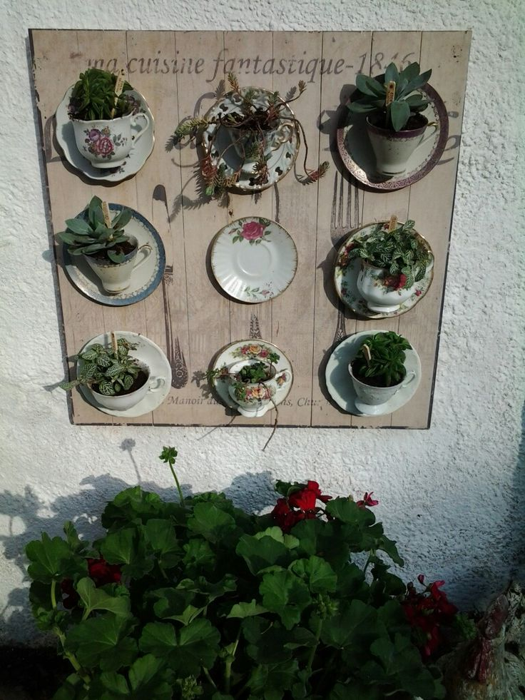 Leuke manier om oude kop en schotels te gebruiken. Deze heb ik op hout geplakt en daarna de kopjes gevuld met vetplanten. Hangt nu leuk aan de muur in de tuin