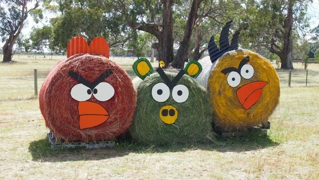 If travelling to Mount Gambier from Western #Victoria, come through the Hamilton and Tarrington region. Here you find a few enterprising farmers who like to decorate hay bales