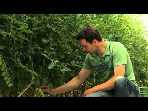 Lyhyt matka kauppaan - Hortiherttua Karjalohjalla -video