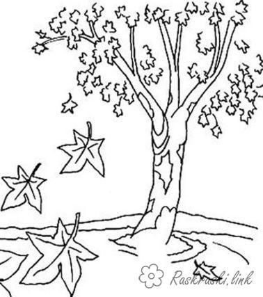 Раскраски Лес и пейзажи раскраска пейзаж падающие листья ...