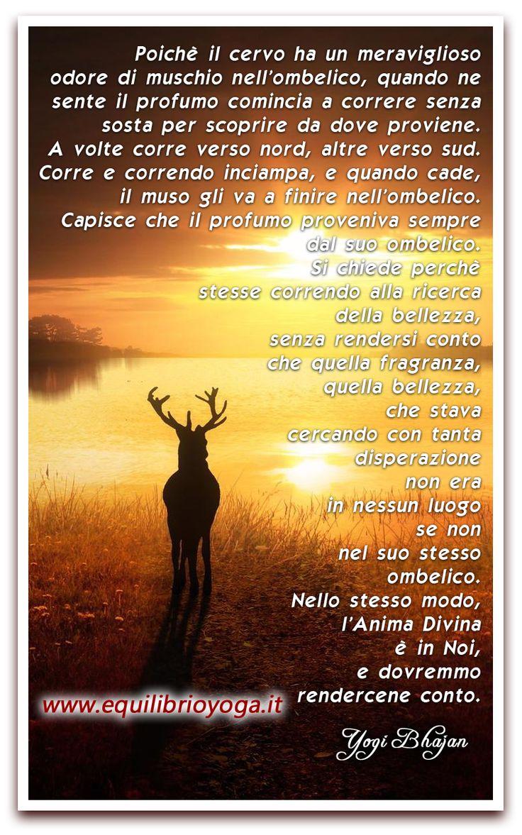 anima in noi - frasi di saggezza di Yogi Bhajan www.equilibrioyoga.it