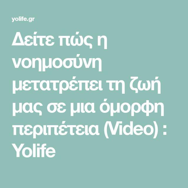 Δείτε πώς η νοημοσύνη μετατρέπει τη ζωή μας σε μια όμορφη περιπέτεια (Video) : Yolife