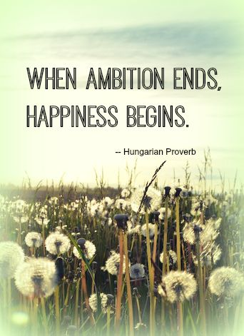 """""""When ambition ends, happiness begins."""" - Hungarian Proverb"""