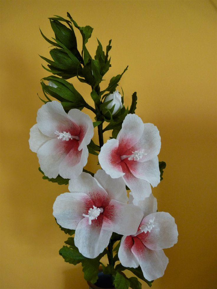 Ibisco ornamentale di carta crespa. Crepe paper flower. Hibiscus Syriacus Dorothy Crane