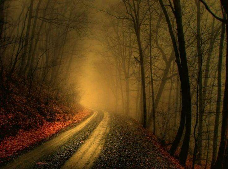 Camino neblinoso