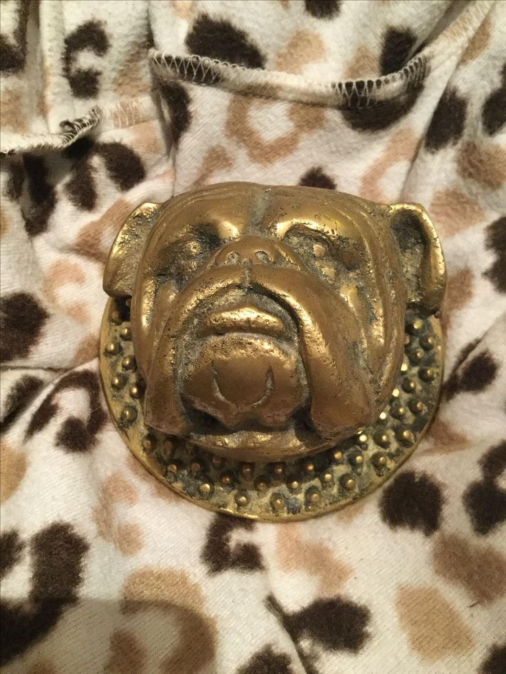 Thank you for my views I hope you enjoy my article   ROYAL Doulton THE BEGINNING   Collectibulldogs No 1 #uk #website for #bulldog #memorabilia @brighton_museums listed #collection. #socialmediamarketing #influencer #instagramhub #instadaily #dogs #pets #instagood #bulldogsofinstagram #antiques #vintage #collectors #badass #special #instadog  http://www.collectibulldogs.com/royal-doulton/
