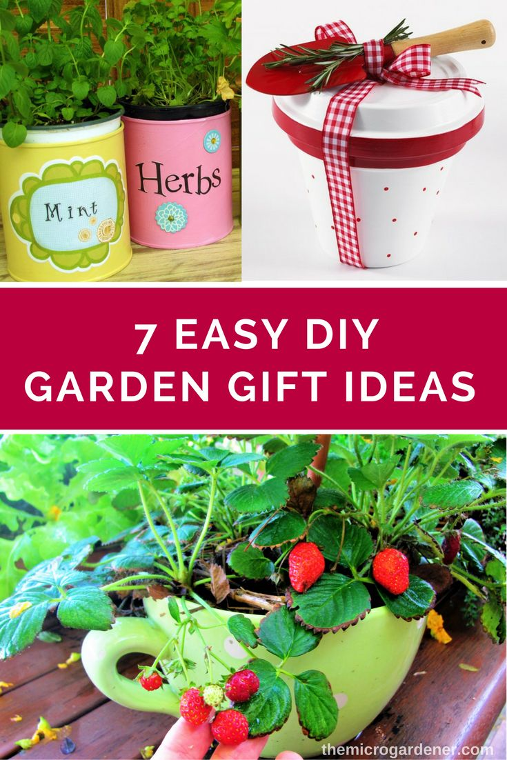 Looking For A DIY Garden Gift? Make Your Own Plant Labels, Mini Gardens,  Decorative Gift Wrap, Seed Tape U0026 Herb Salt With These Easy Ideas + Free  Tutorials.