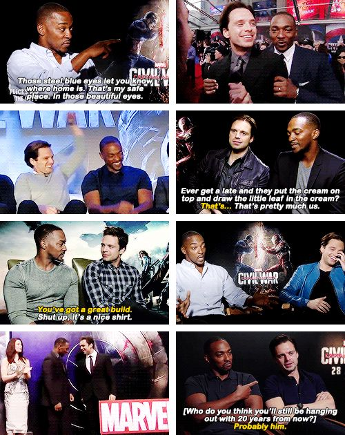 Sebastian Stan and Anthony Mackie are each other's biggest fans.
