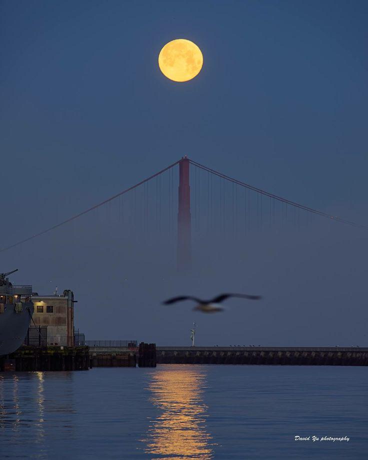 San Francisco Fog Map Live%0A Moon over SF