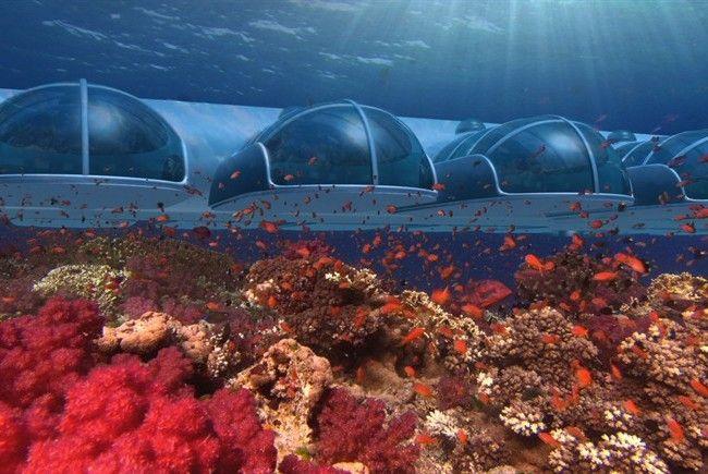 Una camera di hotel vista pesci, un sottomarino per sentirsi un tritone, una piscina grande come un mare, l'acquario delle balene, le cascate più spettacolari e un'incredibile sorgente. Un viaggio nel mondo dell'acqua per sentirsi liberi.