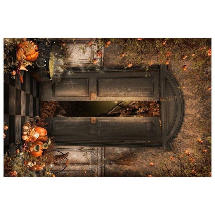 EDT-Photography Backgrounds 1x1.5m Photo Backdrop Halloween Gloomy Witch Room Retro Wall Door Magic Potion Broom Pumpkin Vine