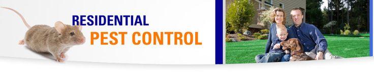 Residential Pest Control | Chicago Pest Control | Chicagoland Exterminator. Aerex.com