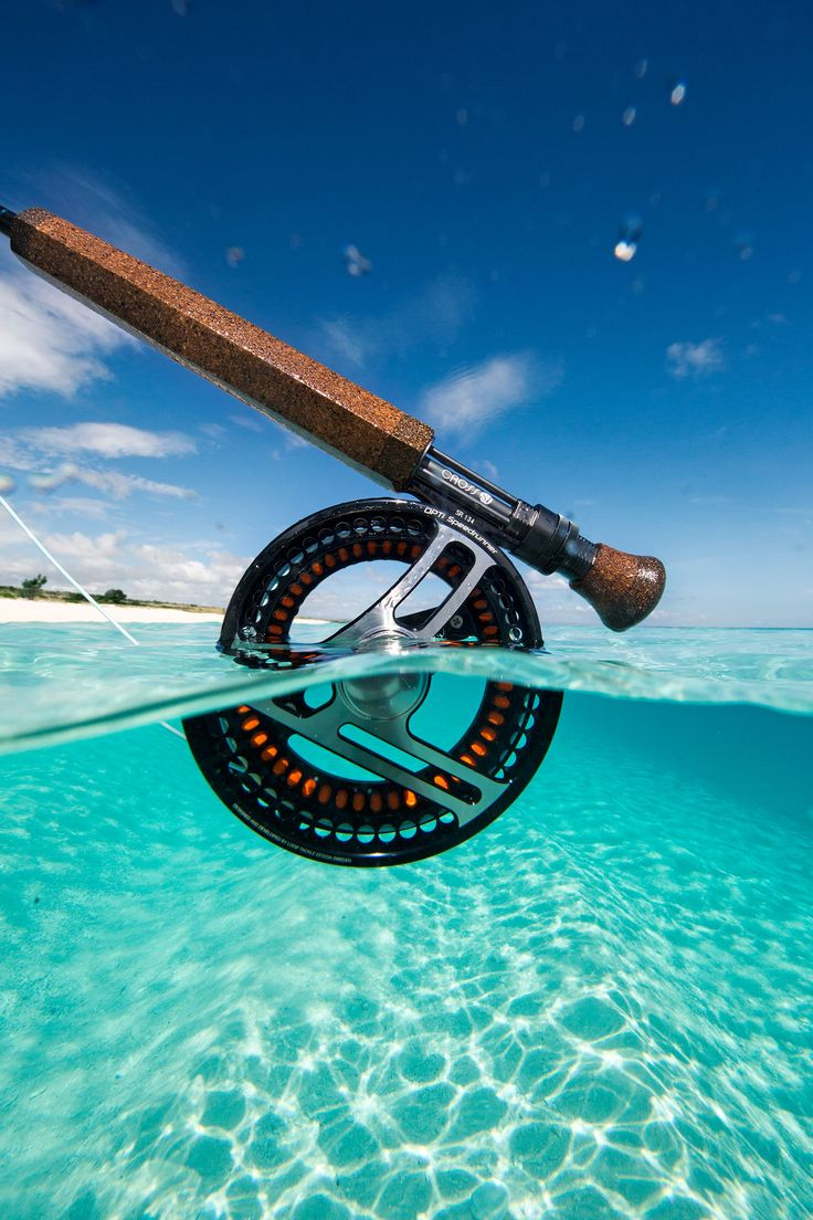 Media   Untamed Fly Fishing Worldwide   The Fly Fishing Nation Since 2007