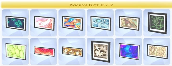 how to create fossil sample sims 4