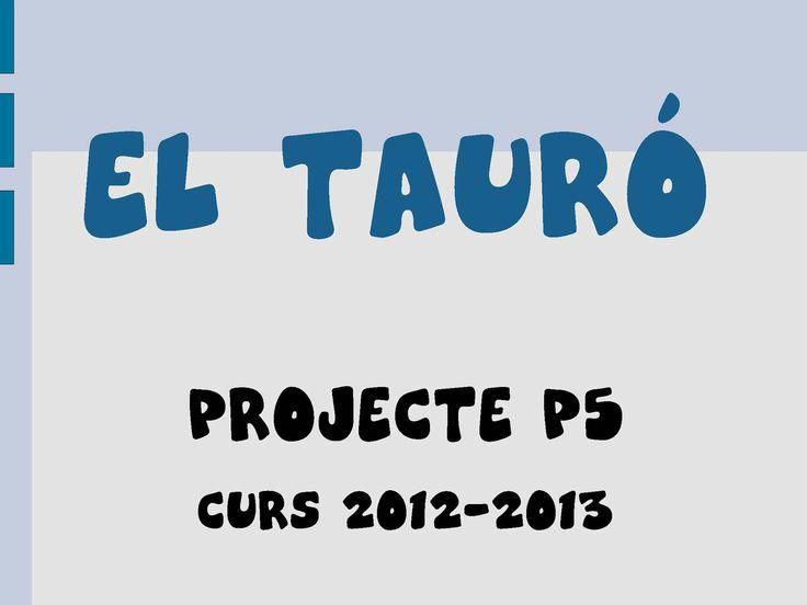 EL TAURÓ PROJECTE P5 Curs 2012-2013
