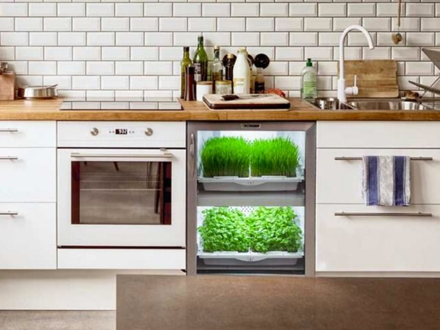 7 best cuisine po sie blanc images on pinterest modern - Potager de cuisine ...