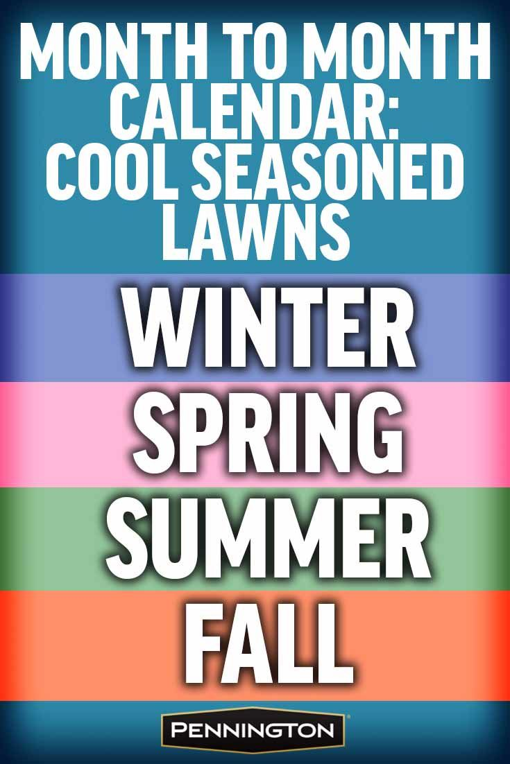 42 best lawn care images on pinterest lawn care backyard ideas