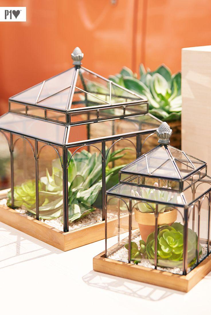 Carefree Terrarium Fill Our Daisy Terrarium Lanterns With Faux