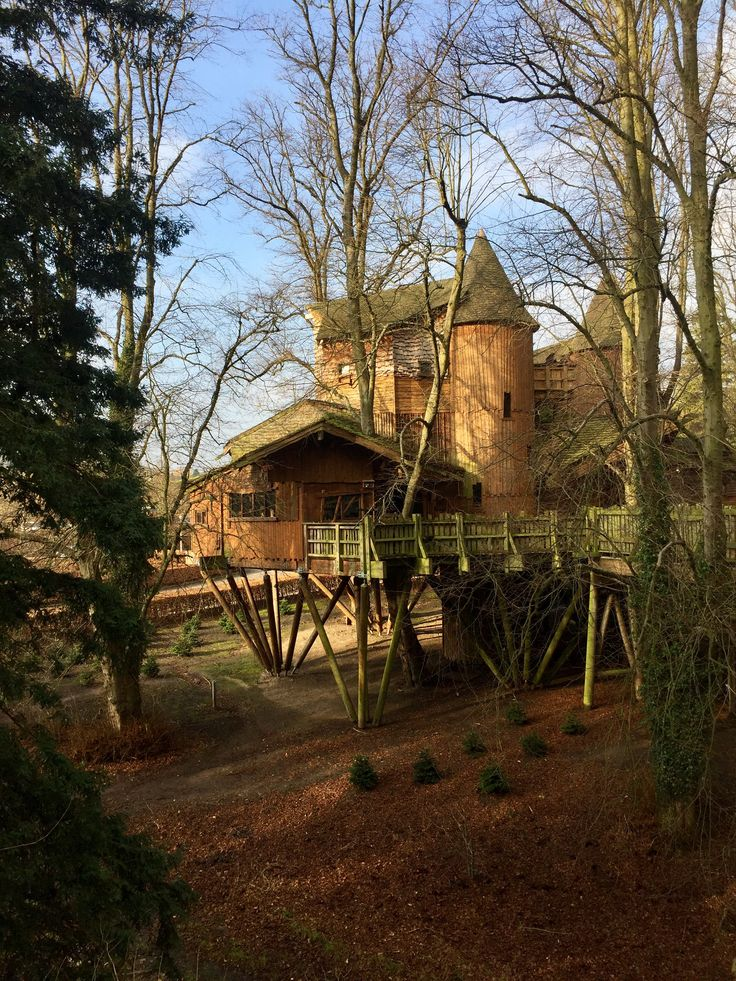 Magical treehouse at Alnwick