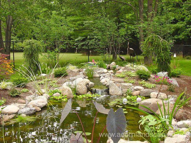экосистемы прудов садовые пруды пруды пруды пруды водопад пейзаж на заднем дворе, на открытом воздухе, прудов водоемов, прудов пруд, водоем пруд кои пруд дизайн светодиодный дизайн света Желудь Благоустройство Рочестер Нью-Йорк 585 442 6373