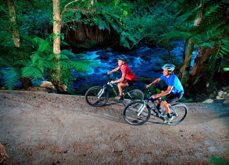 Want to get out and about this weekend? The #Pathway of #Fire Trail (Te Ara Ahi) offers views of the most unique geothermal sites in the world. Riders will be able to experience wonderful landscapes, #vibrant lakes and exotic forests as well as significant #historical and #cultural sites. http://www.rotoruanz.com/visit/to-do/1267/Mountain-Biking/10964/Te-Ara-Ahi-Go-Thermal-By-Bike-Rotorua/