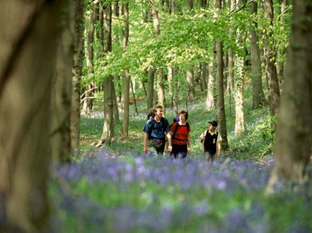Running between Chipping Campden and Bath, the 102 mile long Cotswold Way passes picturesque villages and historic sites as it travels along the Cotswold escarpment.