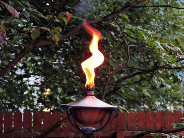 Don't let your ideas be brief candles. My latest post www.kaarinadillabough.com