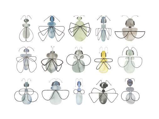 Insecta af Lise Søgaard