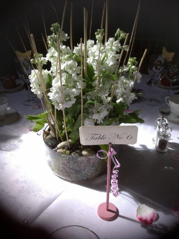 White scented summer stocks table centre