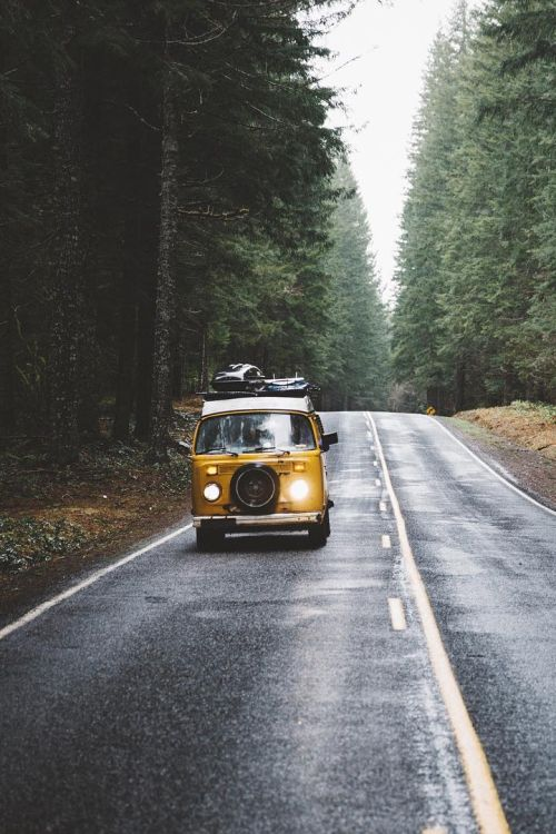 Camper van camping | Forest exploring Road trip | Experience Adventure through Travel | Inspiration Board | Vision Board | Goals