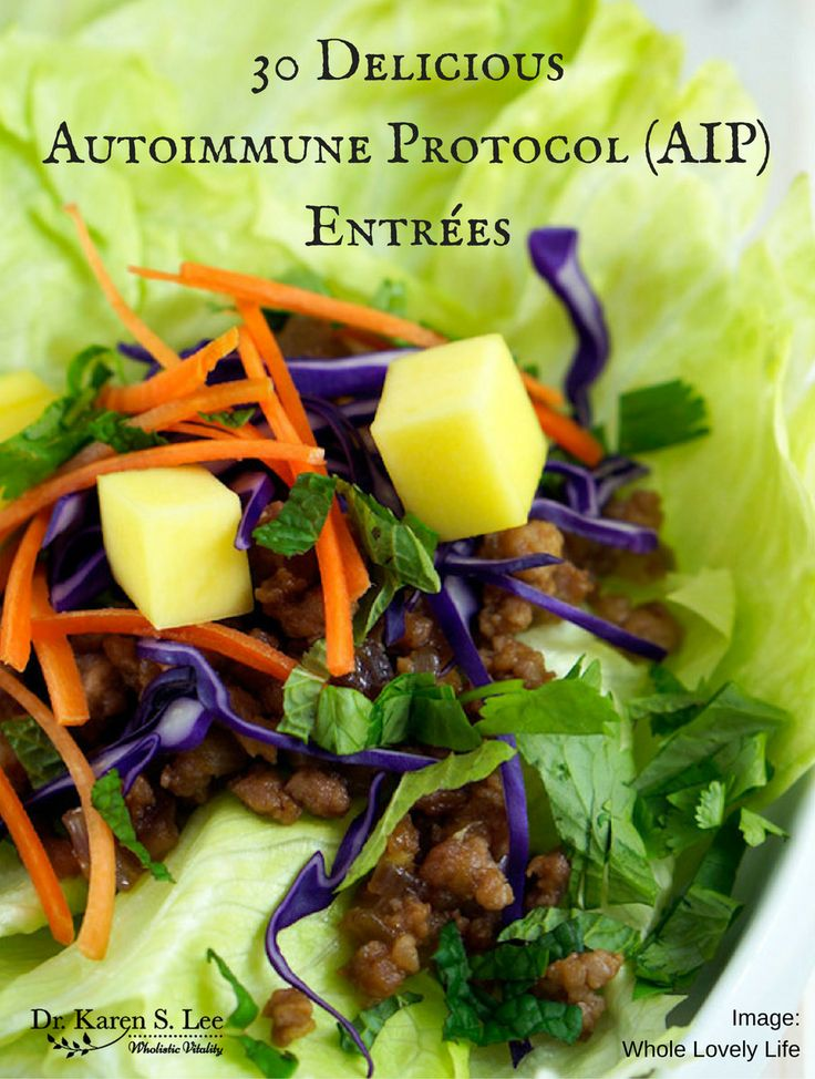 Delicious AIP Entrees; Paleo, Gluten-free, flavor-full! (Gluten Free Recipes Pork)