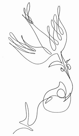 kresba jedním tahem