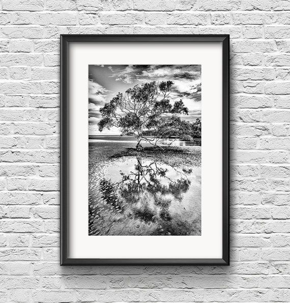 Quiet Reflections  FREE SHIPPING  Black and by ZacHarneyMedia