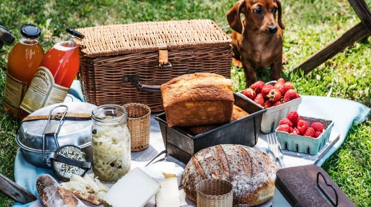 British chef Fergus Henderson shares two of his favourite picnic recipes (cured beef / seed cake) -> so go on: Feed your soul with this ode to picnics.