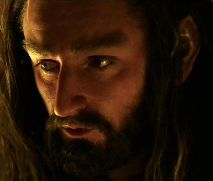 17 Best images about Thorin Oakenshield on Pinterest ...