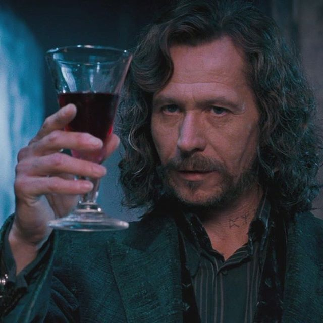 Sirius❤️ comment your favorite character outside of the golden trio! #harryp…